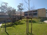 fmlp-2018-escola-eb-frei-luis-de-sousa-lisboa-05.jpg